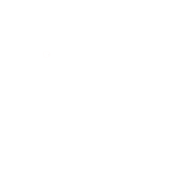 Space dog illustration