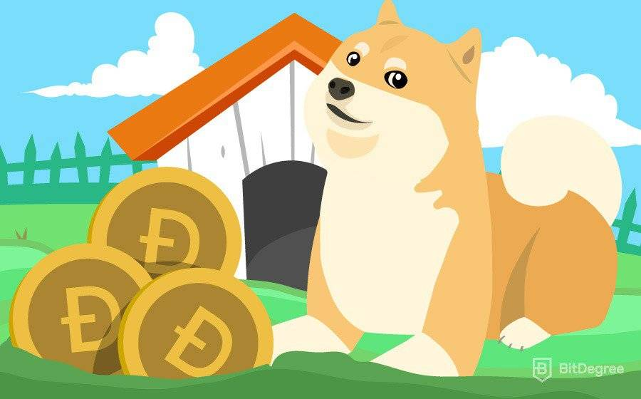 Mining bitcoins and dogecoins dead heat racing bookmakers betting