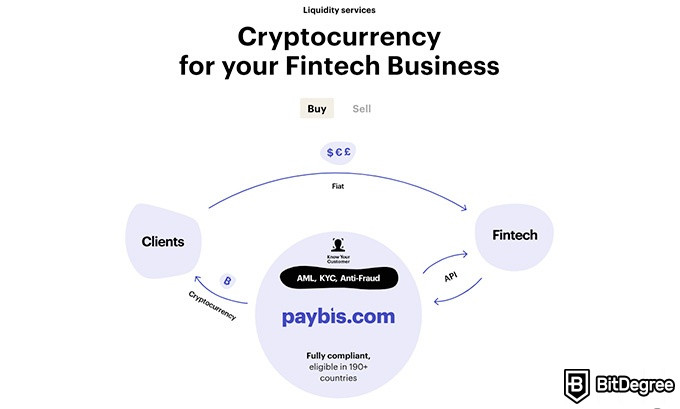 Paybis review: liquidity services.