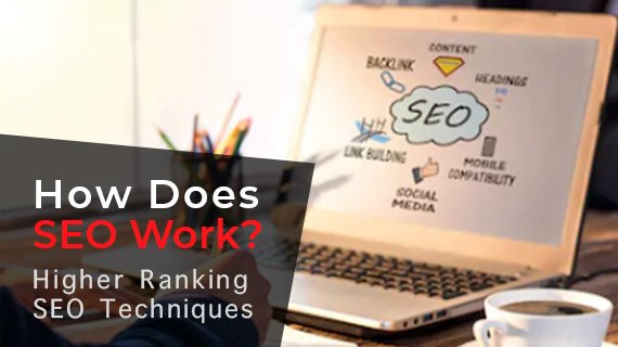 Freely Learn How Does SEO Work? An Advanced Guide to Help You Rank The Highest