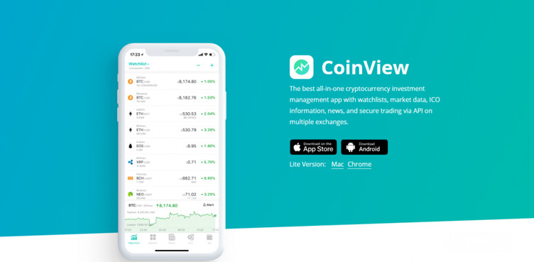 What is an ICO Coinview