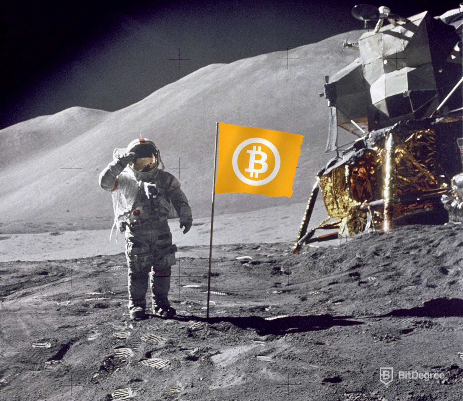 How High Will Bitcoin Go