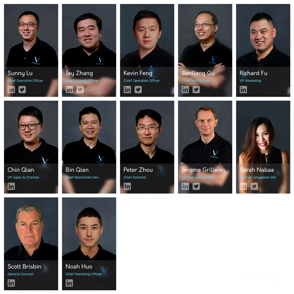 VeChain Price Prediction Core Team Members