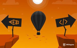 Web Designer vs Web Developer: What's Your Path