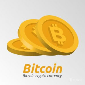 Is bitcoin a bubble? Bitcoin crypto currency