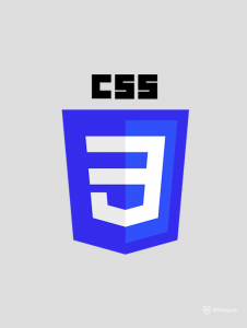 CSS interview questions - logo