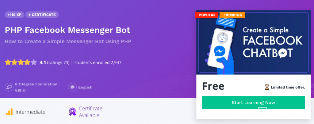 Online programming courses on bots