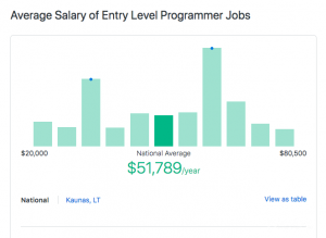 how much money does a programmer make per year