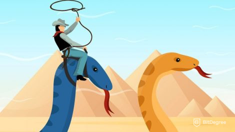 what is python used for: man catching pythons