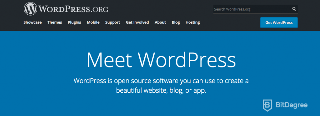 Best CMS: WordPress