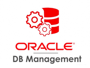 oracle db management